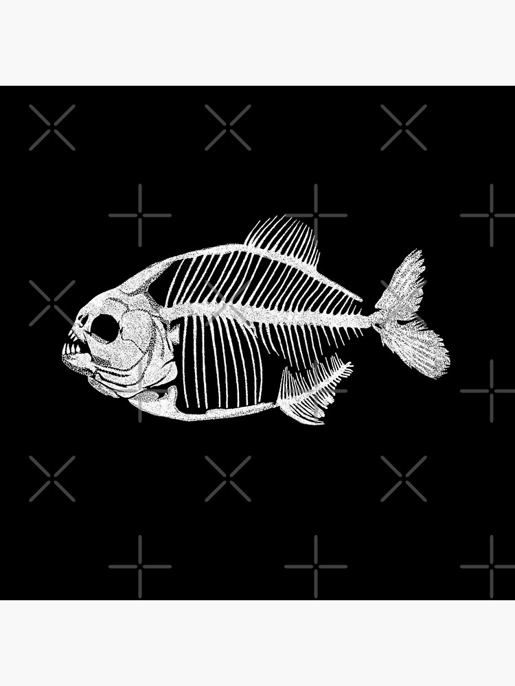 Memoria Amazonica - Piranha Skeleton by GrizzlyGaz