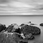 Rocky Outcrop by David MM Williams
