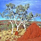 Mighty Pilbara Landscape by Brian Downs