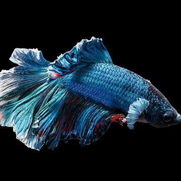 Fish by VILLAGESTORE