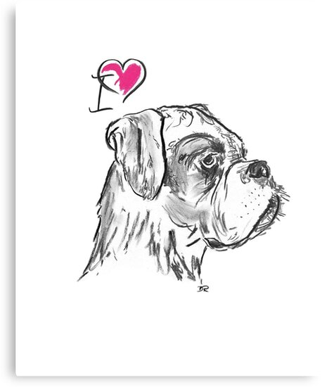 I Love My Boxer by Douglas Rickard