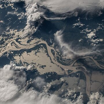 Amazon Rainforrest from space by verigud