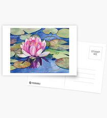 Pink Water Lily Watercolor Postcards