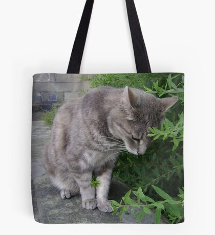 bush-cat.. oddly gripping! Tote Bag
