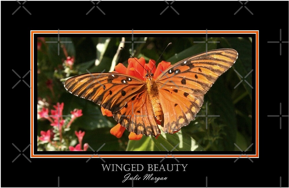 Winged Beauty by Julie's Camera Creations <><