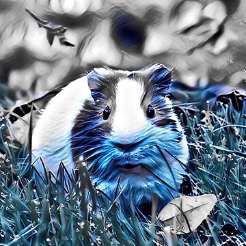 BLUE Guinea pig by Jamcolors