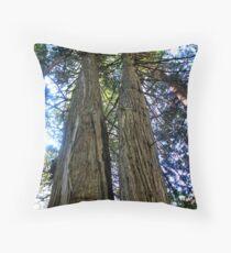 Double Red Cedar - Trail of the Cedars - Glacier National Park Throw Pillow