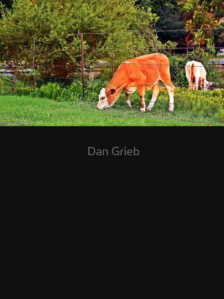 The Grass Is Greener on the Other Side by dangrieb