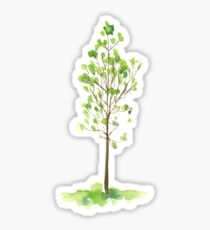 Watercolor young tree with green leaves Sticker