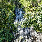 Bridal Veil Falls in Green by Joe Lach
