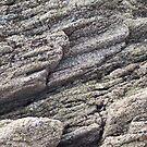 Rock Texture by Steve Hammond