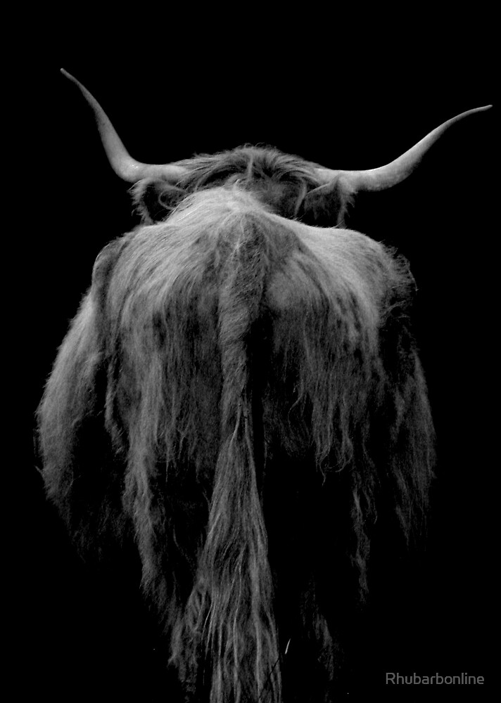 Backend of a Bull by Rhubarbonline