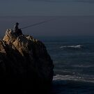 Gone Fishing by Michael Hadfield