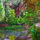 West Fork Canyon - 1 by BGSPhoto