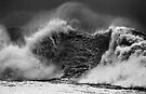 Wave With A Heavy Heart by Alex Preiss