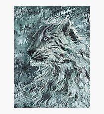 Snow Leopard / Wild Cat - Dark Design Photographic Print