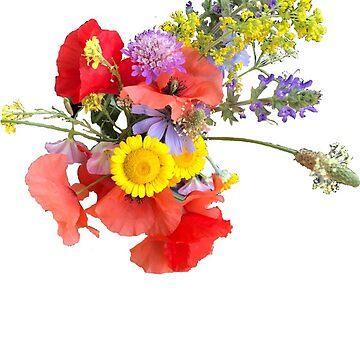 Wildflowers of Chianti by vwells