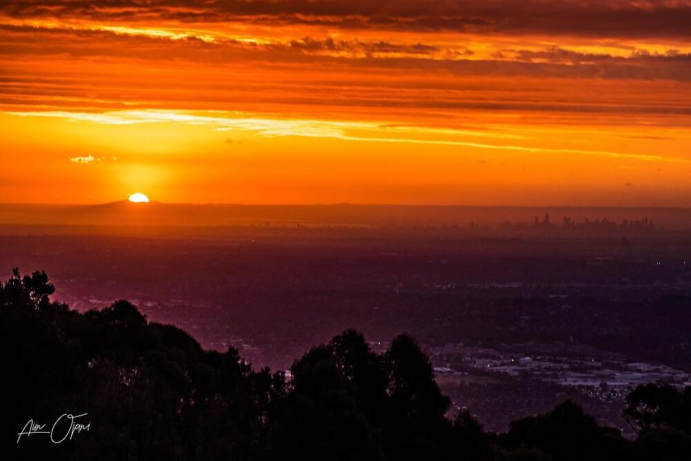 SkyHigh at Sunset by Aiin Ojani