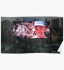 Mr. Cub Forever Poster