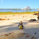 Totoro at the beach by #Bizzartino by Bizzartino
