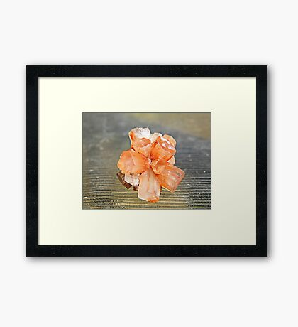 ARAGONITE  Framed Print