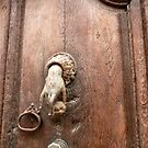 old door with knocker by bubblehex08