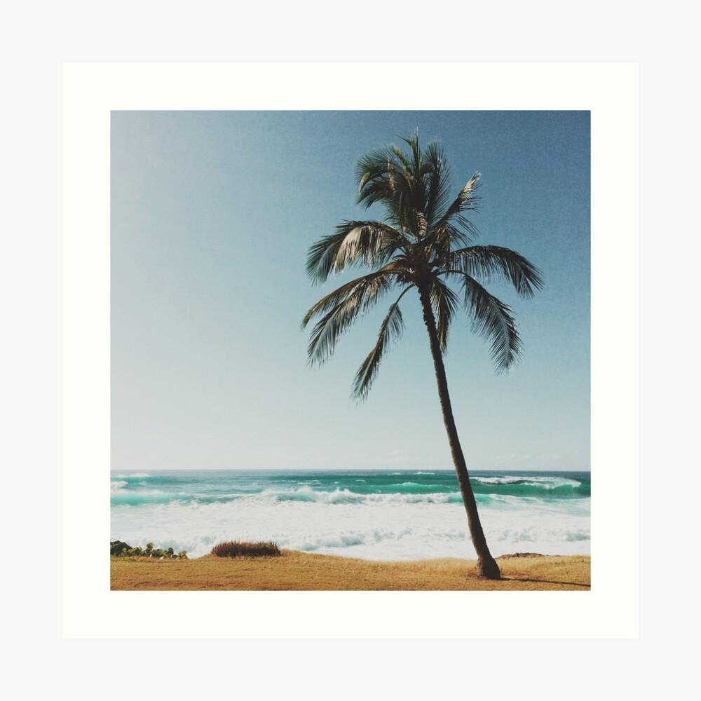 Palmera en la playa Lámina artística