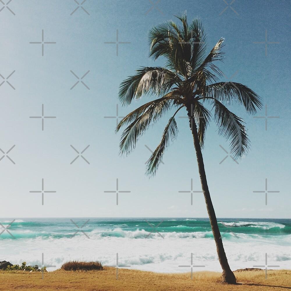Palm Tree By The Beach  by AlexandraStr