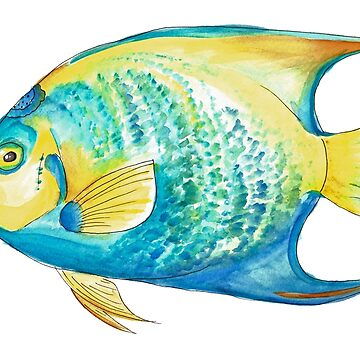 Queen Angelfish in Watercolor by narwhalwall