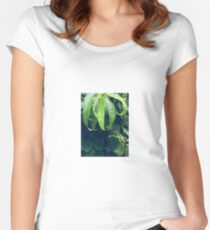 green leave Women's Fitted Scoop T-Shirt