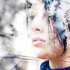 Opalescent, Harlestone Firs by Nikki Smith