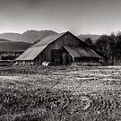 Early morning barn by Jeffrey  Sinnock
