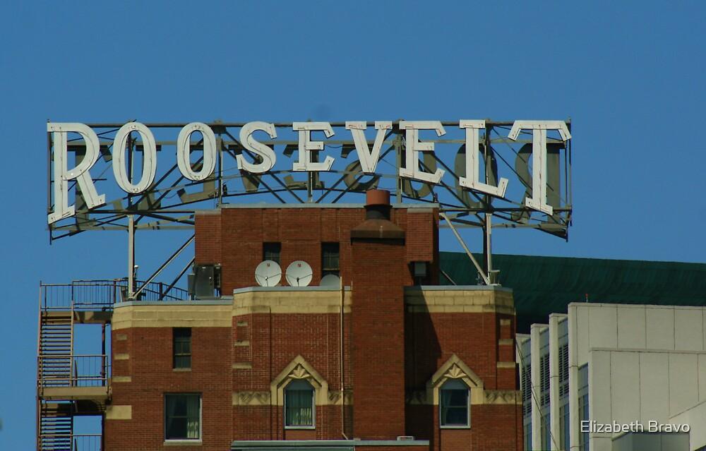 The Roosevelt Hotel by Elizabeth Bravo