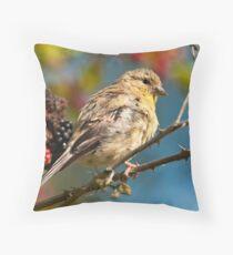 Late Summer Songbird Throw Pillow