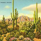 arizona  by jackpoint23