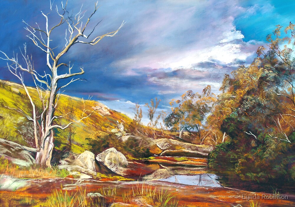 After the Storm by Lynda Robinson
