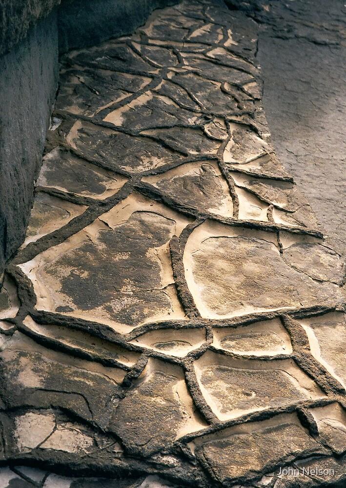 Fossilised Rocks by John Nelson