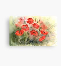 Field Poppies Canvas Print