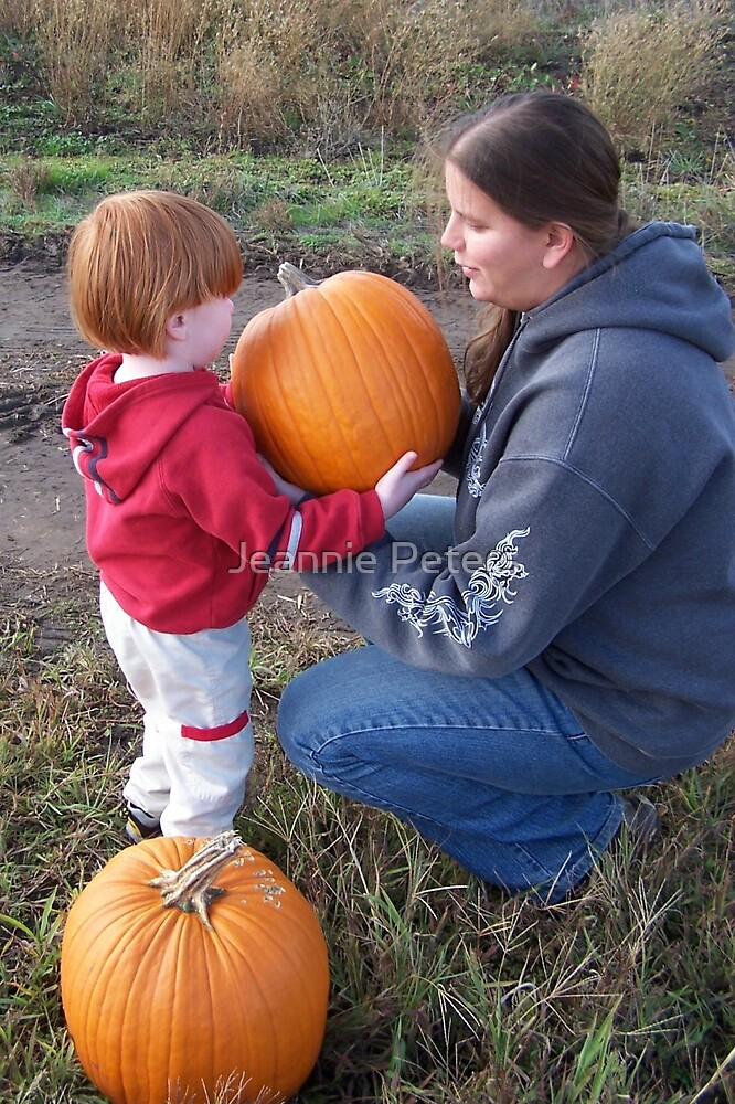 pumpkin patch by Jeannie Peters