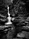 Adams Falls by Aaron Campbell