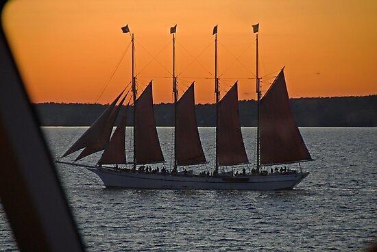 Last light... Bar Harbor. by Richard  Stanley