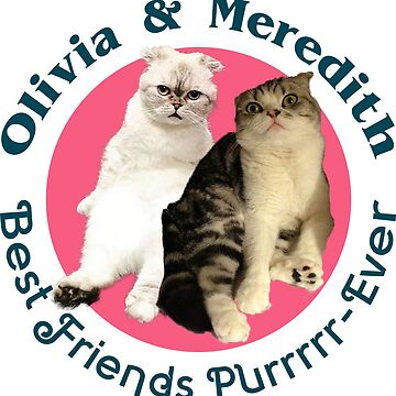 Olivia & Meredith - Best Friends Purrrrr-ever by JSMediaPro