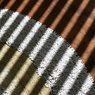 Textures and Shadows by Sally Green