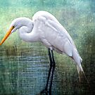 Great White Egret at Work by Bonnie T.  Barry