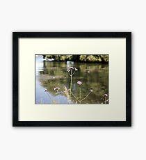 Flowers at the Lake Framed Print