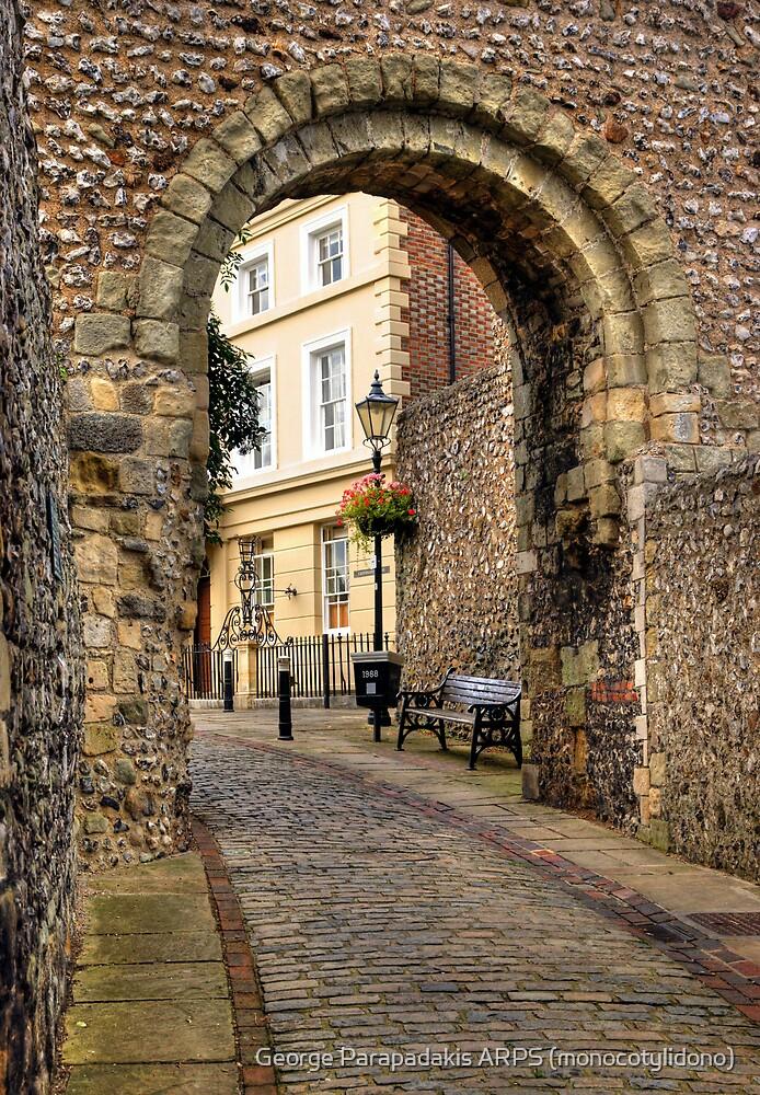 Castle Gate - Lewes by George Parapadakis ARPS (monocotylidono)