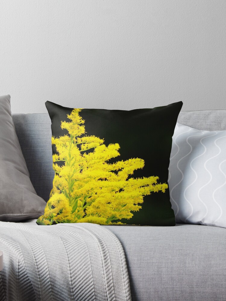 Pleasant Edible Beauty Throw Pillow By Lorilee Forskolin Free Trial Chair Design Images Forskolin Free Trialorg
