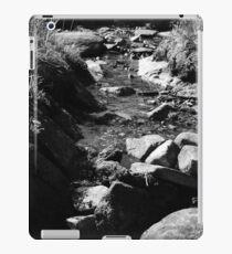 stoned iPad Case/Skin