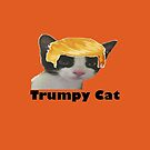 Trumpy Cat by teesbyveterans