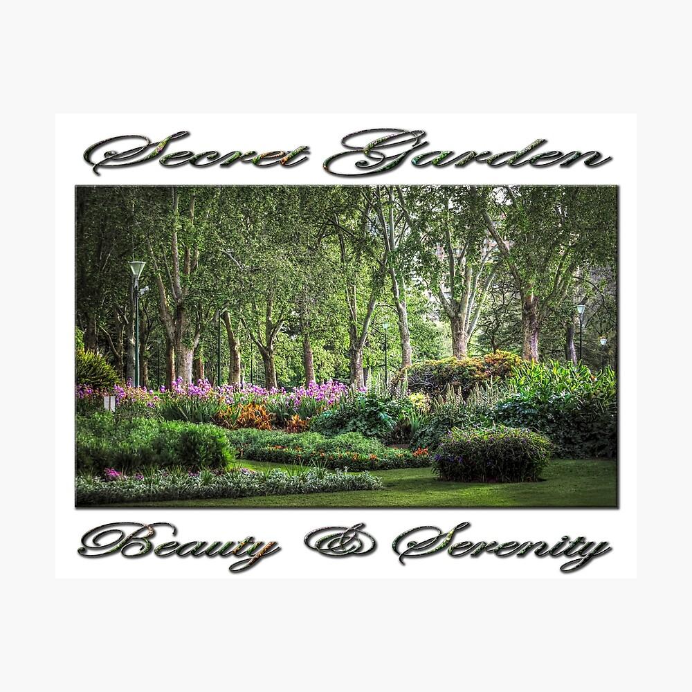 Secret Garden, Beauty & Serenity Photographic Print